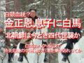 白頭血統?金正恩,息子に白馬、北朝鮮は今どき四代世襲か、…白馬のパクり伝説で、肺炎危機の中,苦難の行軍を乗り切れってか